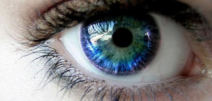 ochilor, ochiul