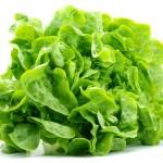 Dieta cu salata verde – se poate slabi 7 kg in 11 zile