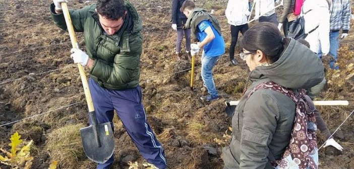 "Andreia Schneider – coordonatorul ""Plantam fapte bune"" Timis"