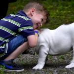 """Workshop: terapia asistata de animale la """"Copiii de Cristal"""""""