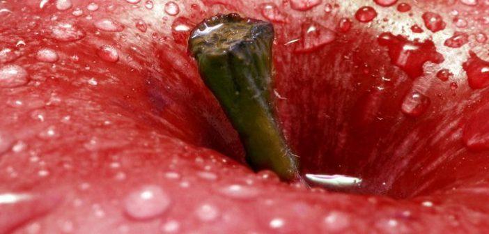 hemoroizii
