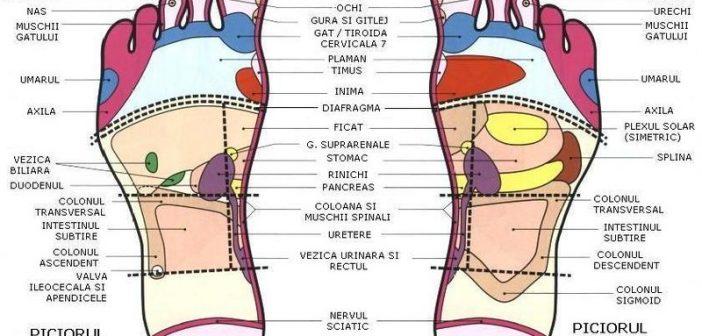 Cauzelele durerii lombare