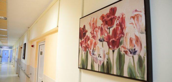 Modernizari importante la Spitalul Judetean Timisoara. Servicii hoteliere la standarde europene (VIDEO)