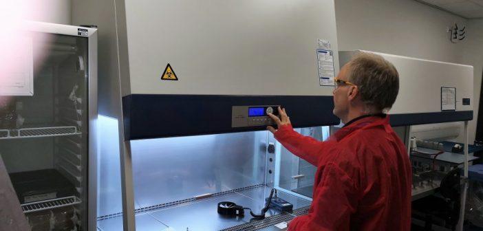 Hotele microbiologice, absolut necesare – ce rol au acestea in laboratoare